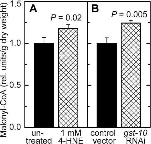 Effect of increased 4‑HNE levels on malonyl-CoA concentration