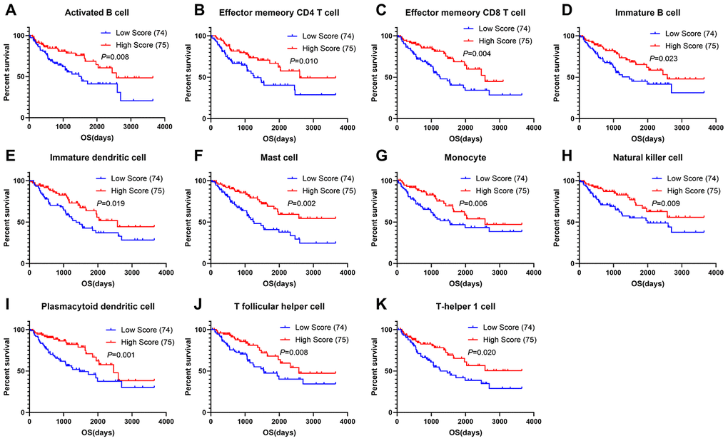 Correlations of immune cell scores and overall survival in sarcoma. (A–K) Infiltrating immune cells significantly associated with improved prognosis. The high- and low-score groups were divided based on the top 30% and the bottom 30% infiltrating scores calculated by ssGSEA algorithm, respectively)