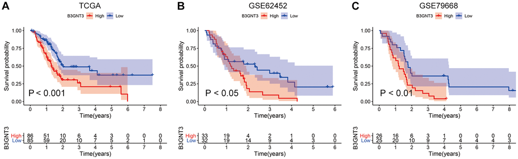 KM survival analysis for B3GNT3 through the TCGA, GSE62425, and GSE79668 datasets. (A–C) High expression of B3GNT3 was significantly associated with poor survival in PC (P value