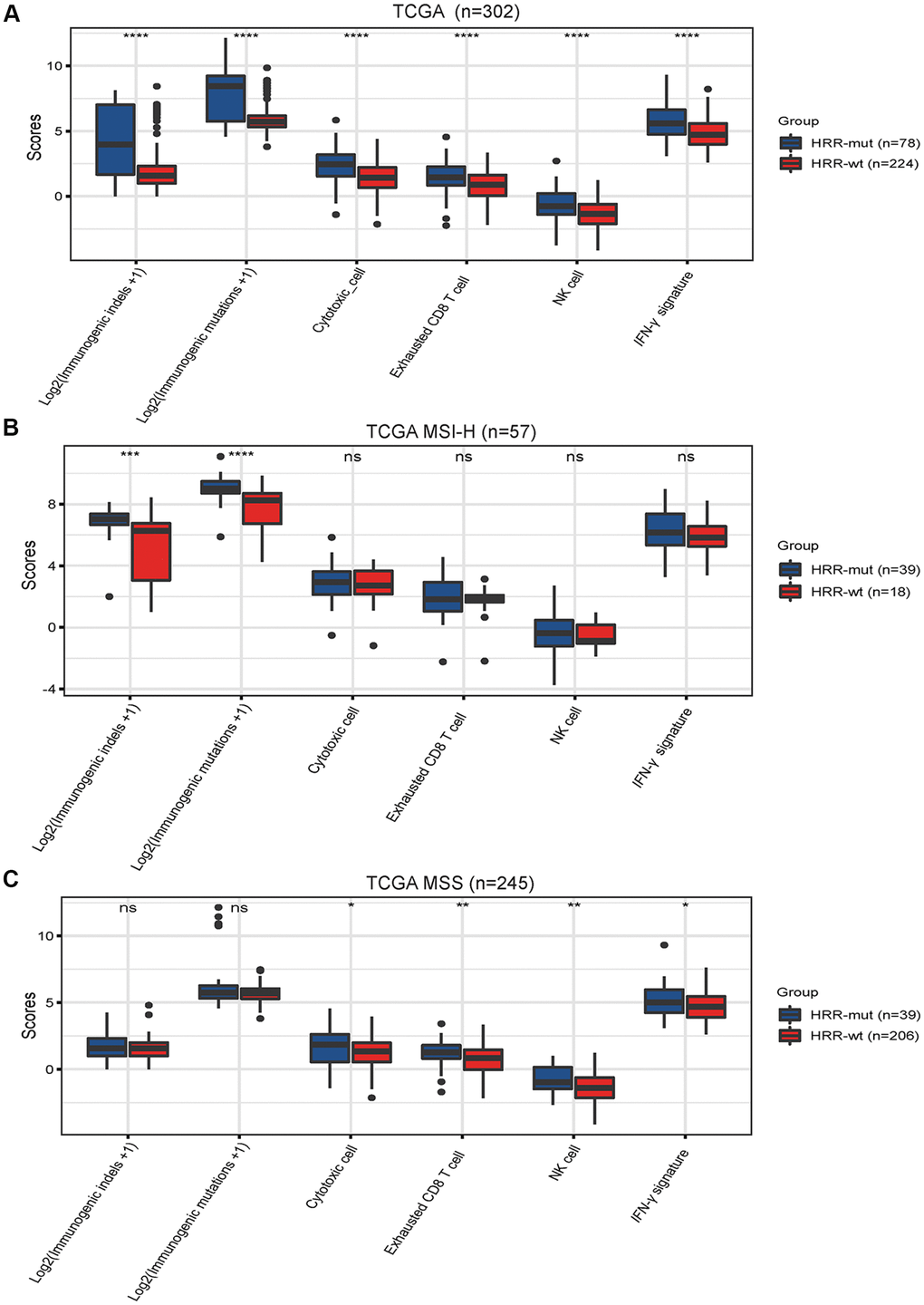 Mutations in HRR genes are associated with tumor immunogenicity and immune activity. Box plots showing the scores of immunogenic mutations, immunogenic indels, cytotoxic cells, exhausted CD8+ T cells, NK cells and IFN-γ signatures in the TCGA (A), TCGA MSI-H (B) AND TCGA MSS (C) cohorts. The scores for immunogenic mutations and indels are shown in log2-transformed format. P values were calculated with the Mann–Whitney U test; the box shows the upper and lower quartiles (* P P P P > 0.05).