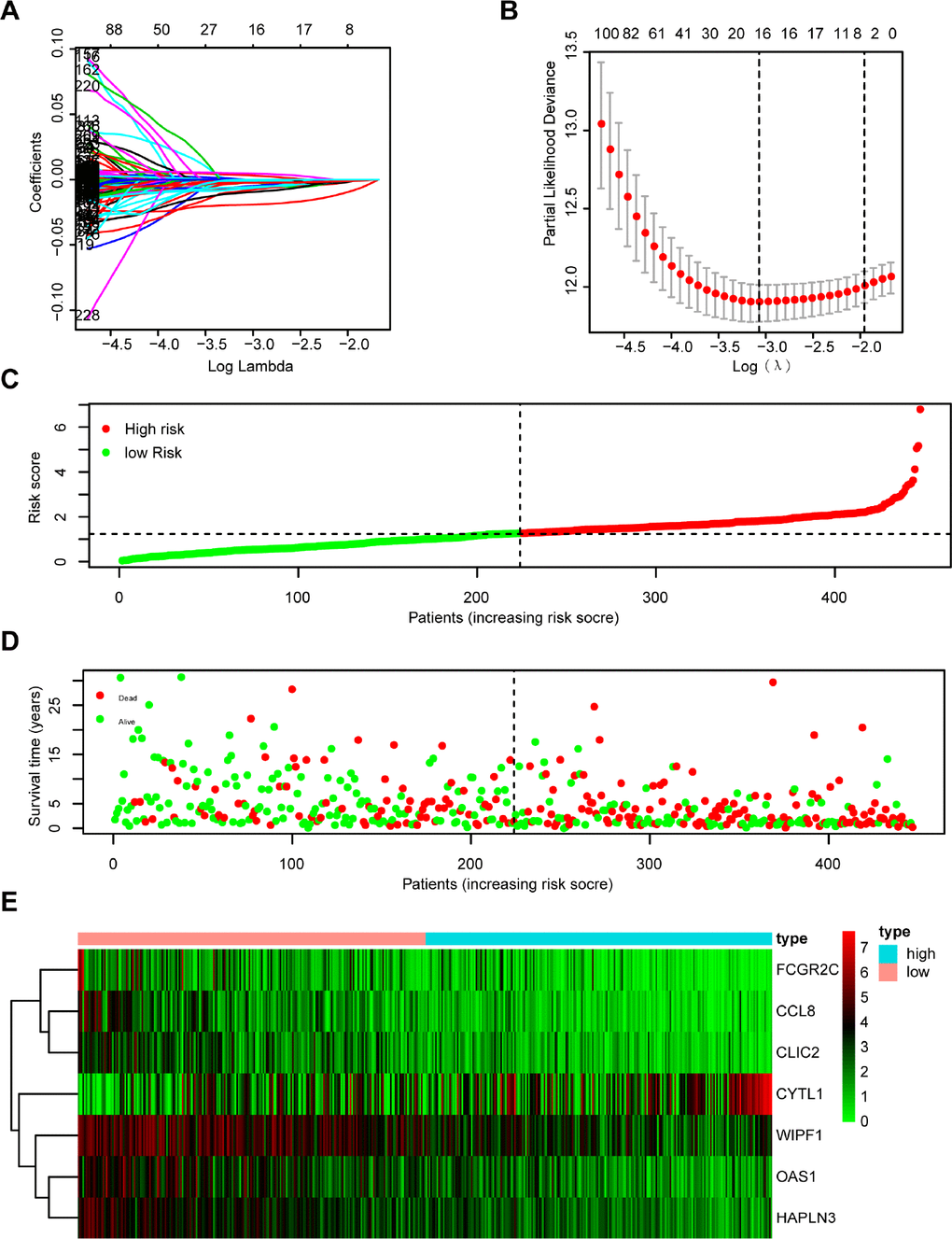 Establishment and assessment of immune-related prognostic signature. (A, B) 294 DGEs determined using (A) LASSO regression analysis and (B) 10-fold cross-validation. (C–E) The distribution of (C) risk score, (D) survival status, and (E) immune-related gene expression profiles.