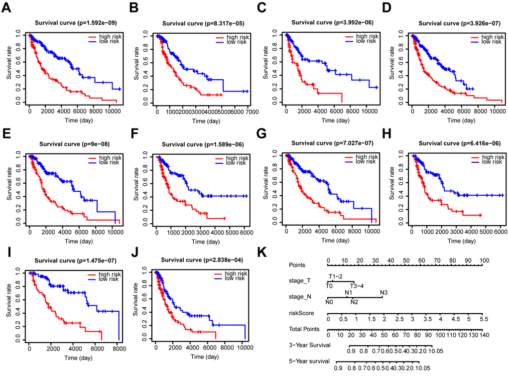 Stratification analysis and construction of a prognostic nomogram in patients. (A–J) Kaplan–Meier analysis of the subgroups including (A) ≤ 60 years, (B) > 60 years, (C) female, (D) male, (E) stage I-II, (F) stage III-IV, (G) N0, (H) N1-3, (I) T1-2, and (J) T3-4. (K) OS predictive nomogram.