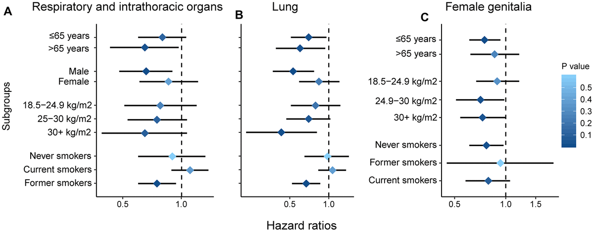 Subgroup analysis by age, gender, smoking and BMI. Respiratory and intrathoracic organs (A); lung (B); female genitalia (C).