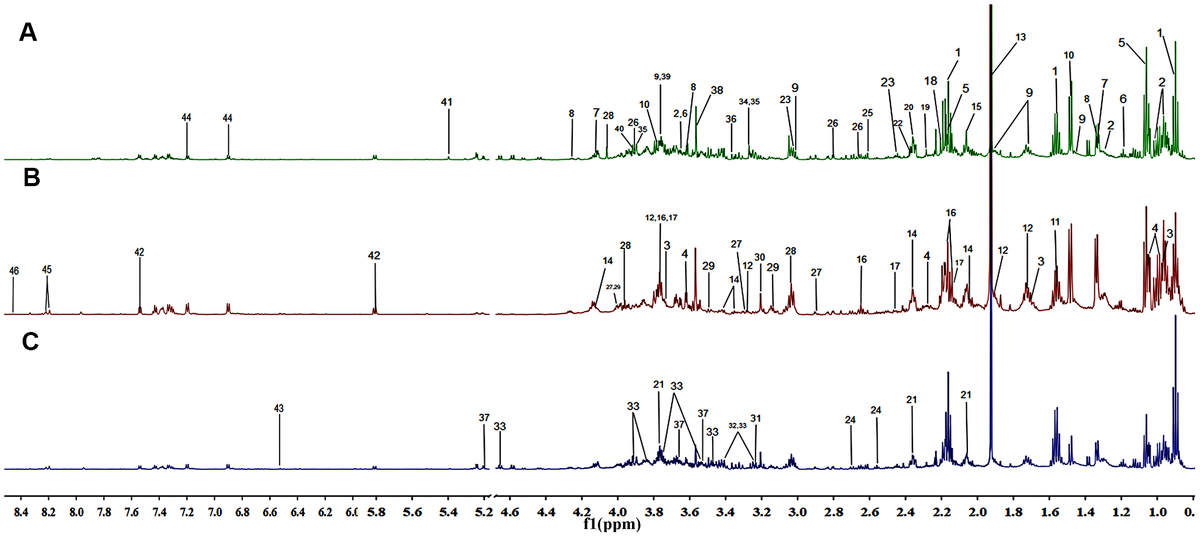 Representation of the 600 MHz 1H NMR spectra of the fecal samples collected from the negative control group (A), the aging group (B) and the constipation group (C). The assignments of 46 metabolites are given in Table 3.
