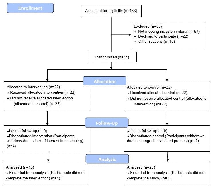 CONSORT 2010 flow diagram.